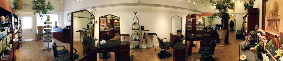 XL Salon | Panorama